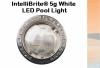 Pentair IntelliBrite 5g White