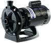 Polaris 3/4 HP Booster Pump
