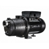 Pentair Boost-Rite Universal Booster Pump