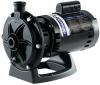 Polaris 3/4 HP Booster Pump