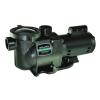 Sta-Rite SuperMax 1.5HP Pump