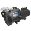 Waterway Plastics Champs 1HP Pump